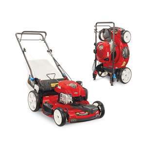 Toro Lawnmowers - 20339 Recycler