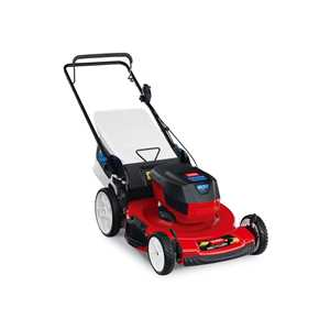 Toro Lawnmowers - 20361 Battery Recycler