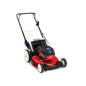 Toro Lawnmowers - 20367 Battery Recycler