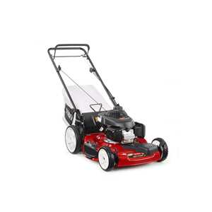 Toro Lawnmowers - 20379 Recycler