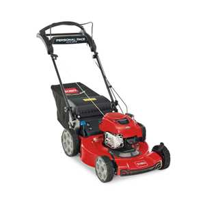 Toro Lawnmowers - 21462 Recycler
