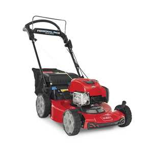 Toro Lawnmowers - 21464 Recycler
