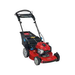 Toro Lawnmowers - 21465 Recycler